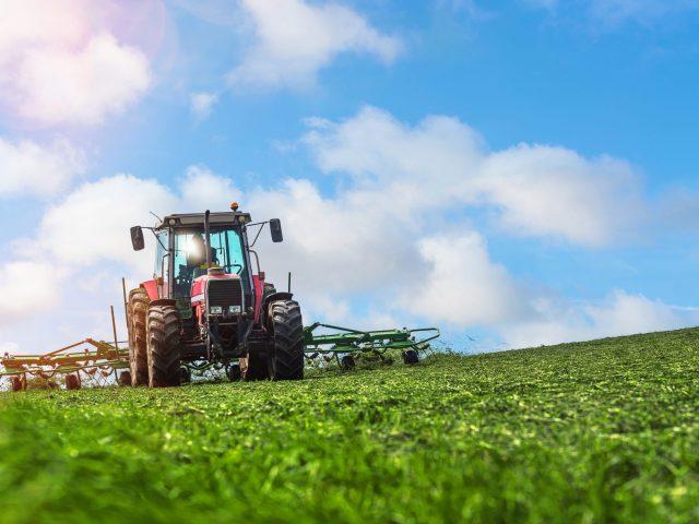 Ländlicher Raum & Landwirtschaft